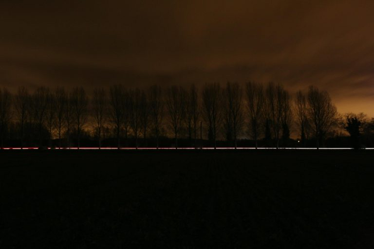 Avenue of poplar trees at dusk, A340 | Peter Oldridge