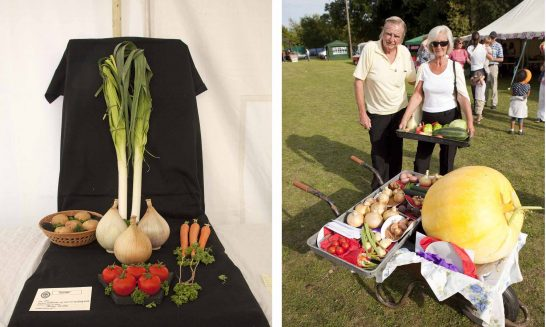 Aldermaston & Wasing Show- produce 01