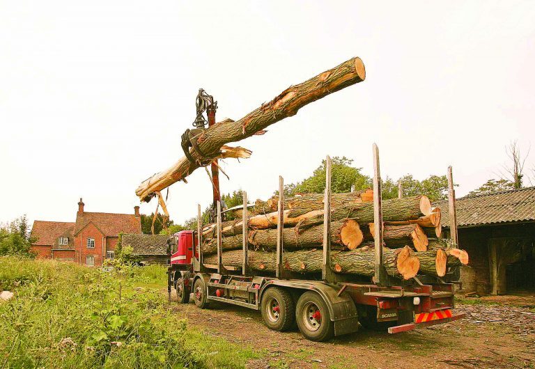 Aldermaston Businesses- Cricket Bats. The willows arrive | Peter Oldridge