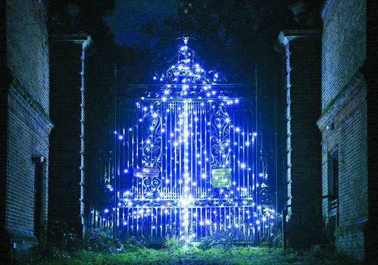 Covid 2020-Christmas tree | Peter Oldridge